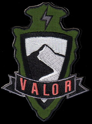 Valor Insignia Patch